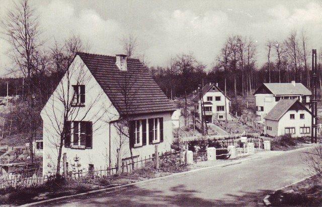 Le beau coin dans les sapins - Rixensart Collection Source Magguy Van Goethem