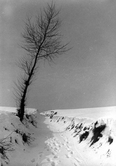 La Solitude (Vallée de la Lasne concours photo 1970 Besangez Roger) © SI Rixensart