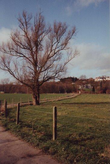 76. Chemin du Belloy 1992 © Michel Nauwelaers