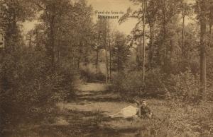 bois,rixensart,parc communal,fond du bois