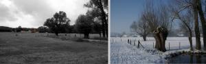 genval,mahiermont,chapelles,vallée de la lasne,milo,leur abri