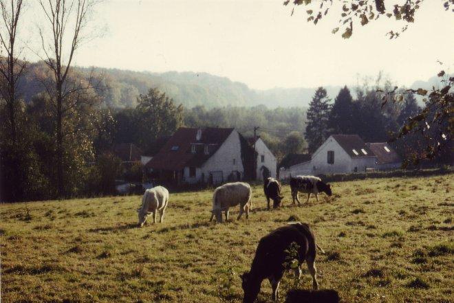 923. Drève du Fory à Rosières 1992-1995 © Hommes et Patrimoine