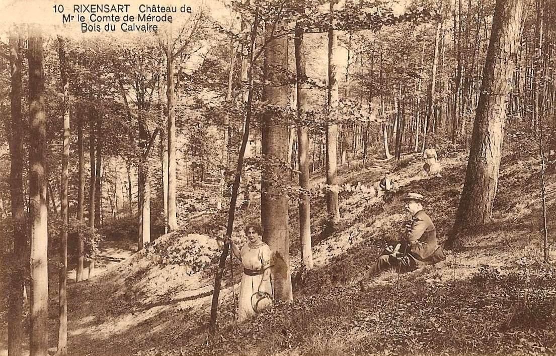 1340. Bois du Calvaire