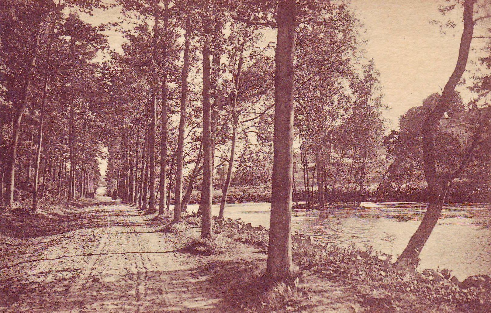 La Drève et l'Etang Collection Magguy Van Goethem