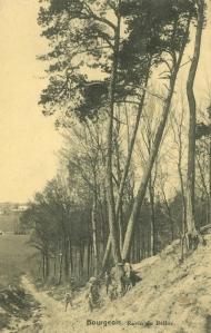 1690. Ravin du Belloy à Bourgeois 1921 c JCR Martin.jpg