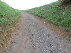 908. Chemin du Tilleul 11.2011 © Christiane Boehm.JPG