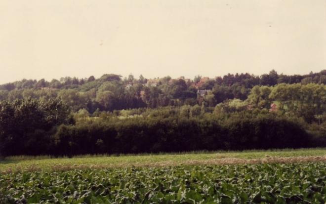 119x. Le Plagniau - Vue sur la rue de La Hulpe et la Drève du Fory 1992-1995 © Hommes et Patrimoine.JPG