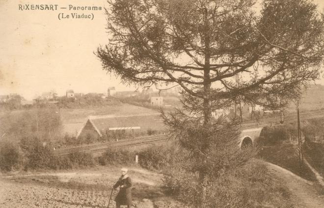 999. Panorama (Le Viaduc) Fond du Patch Rixenbsart c JCR Martin