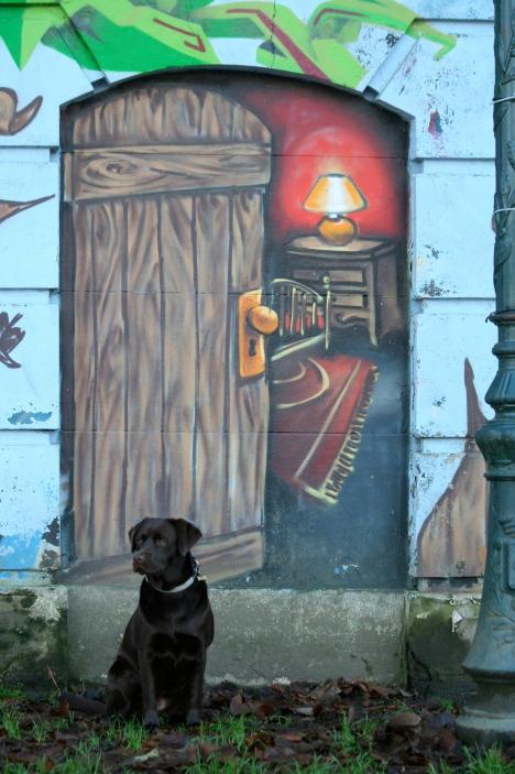 20081208 Graffitis du Lac détail © André Riche