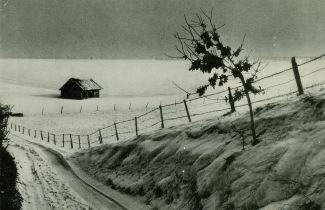 Sentier du Meunier dans les années 1950. A droite de l'abri à bestiaux, l'endroit où se trouvait le campement anglais coll Jean-Claude Renier